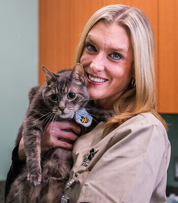 Allison, Licensed Veterinary Technician